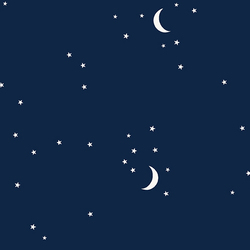 Moon and Stars in Navy
