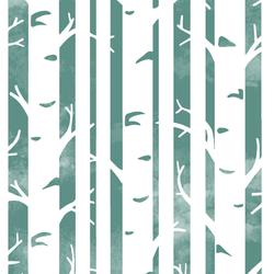 Big Birches in Agate