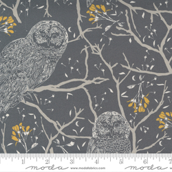 Woodland Owls in Charcoal