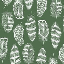Plume in Kale
