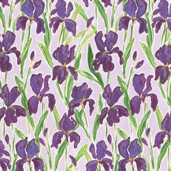 Irises in Multi