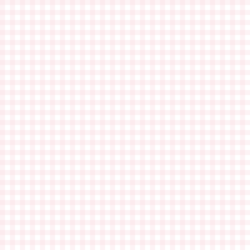 Little Gingham in Soft Pink