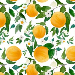 Large Oranges in White