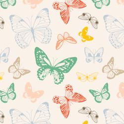 Butterflies in Summer Sunshine