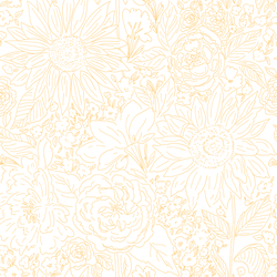 Paperie in Creamsicle on White
