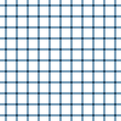 Liberty Gingham in Navy Blue on White