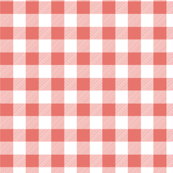 Medium Buffalo Plaid in Living Coral