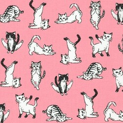 Playful Cats in Pink