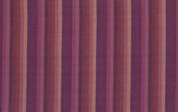 Multi Stripe in Raspberry