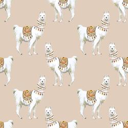 Llamas in Cashmere