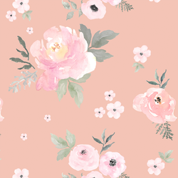 Sweet Blush Roses in Petal