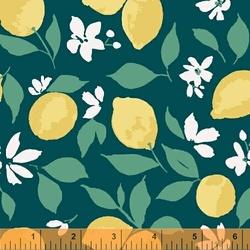 Lemons in Teal