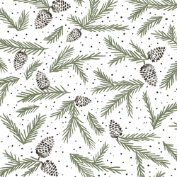 Boreal Branches in Olive