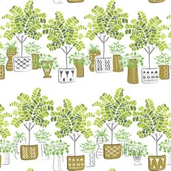 Fiddlehead Trees in Greenery
