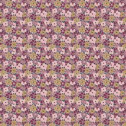 Primula Poppy in Lyrical