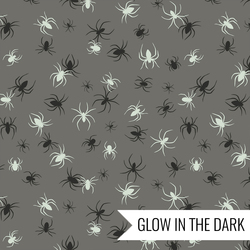 Spiders in Grey