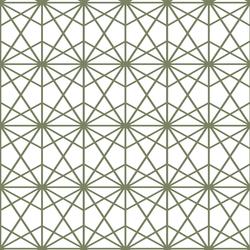 Terrarium in Olive on White