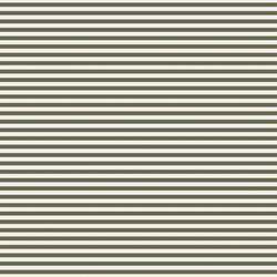Stripe in Lichen