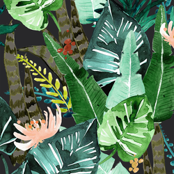 Rainforest in Shade