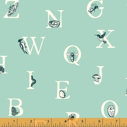 Alphabet in Birds Egg