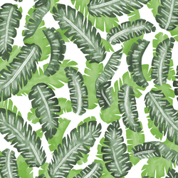 Banana Leaves in Greenery