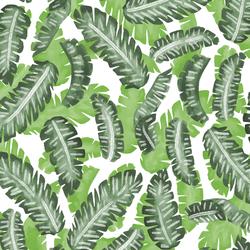 Banana Leaves in Greenery