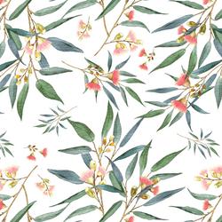 Banksia in White