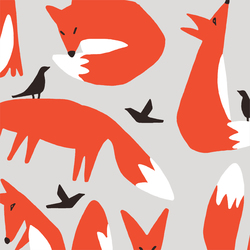 Foxes in Multi