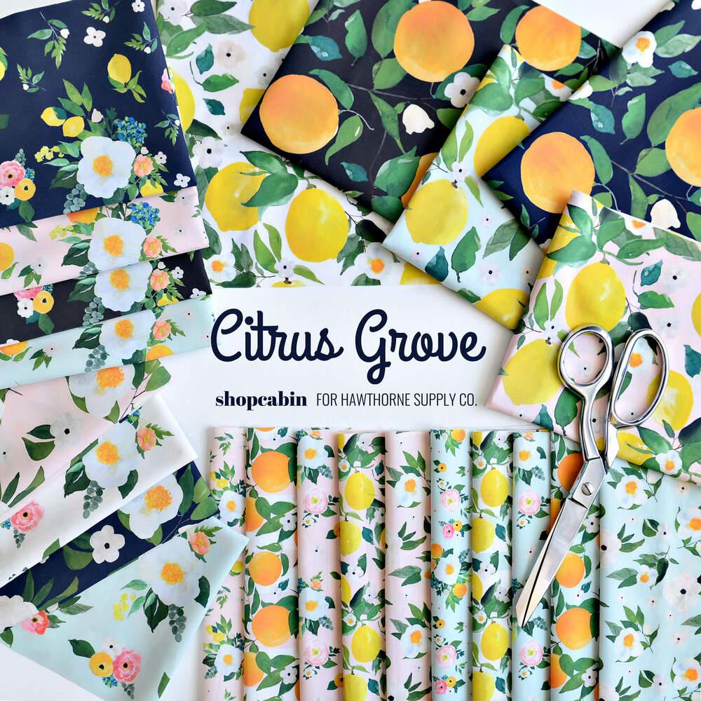 Citrus Grove Poster Image