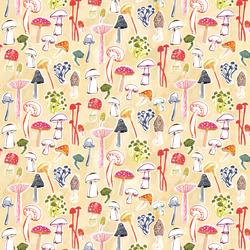 Funghi in Multi