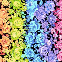 Rainbow Roses in Black