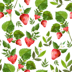 Strawberry Fields in White