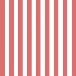 Candy Stripe in Poppy