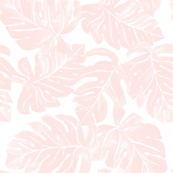 Leafy Monstera in Shell Pink