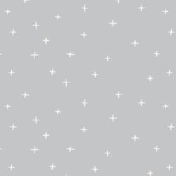 Swiss Cross in Lunar Gray