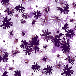 Daisy Bundle in Light Orchid