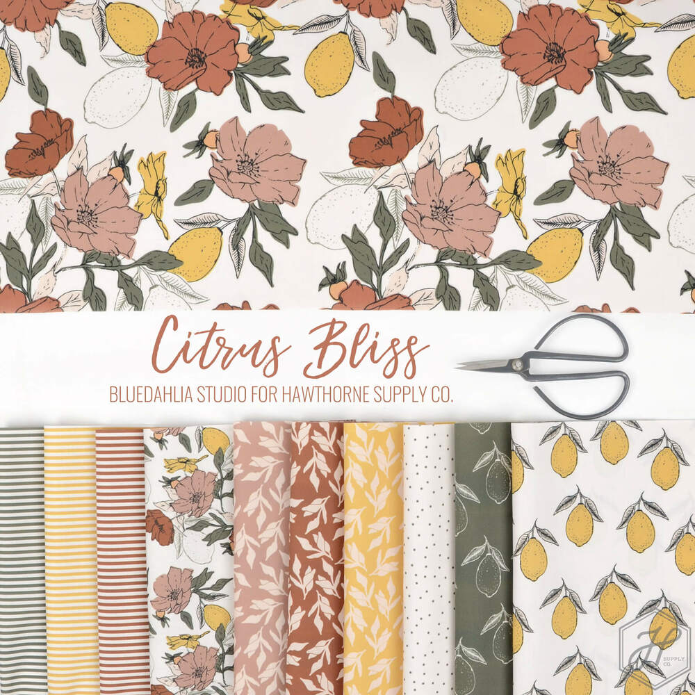 Citrus Bliss Poster Image