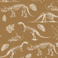 Fossils in Ochre