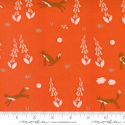 Foxes in Geranium