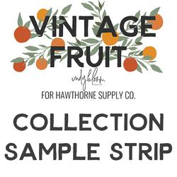 Vintage Fruit Sample Strip