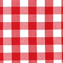 One Inch Carolina Gingham in Red