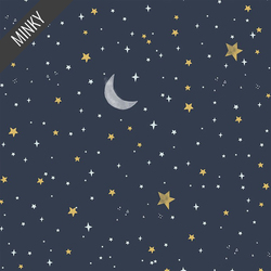 Night Sky in Midnight