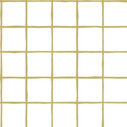 Windowpane in Brass on White