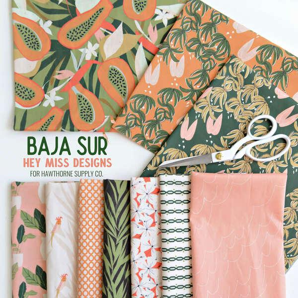 Baja Sur Poster Image