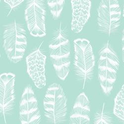 Plume in Aloe