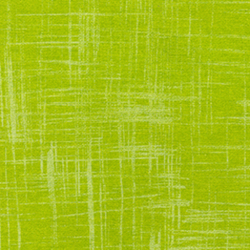 Painters Canvas in Lime