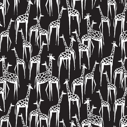 Giraffes in Black