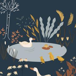 Ducks in Lagoon