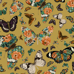 Autumn Butterfly in Gold Glow