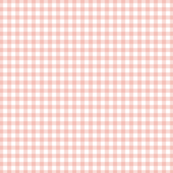 Little Gingham Check in Pink Peach